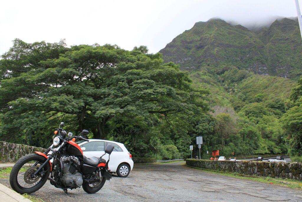 Riding Oahu-uploadfromtaptalk1353547539136.jpg