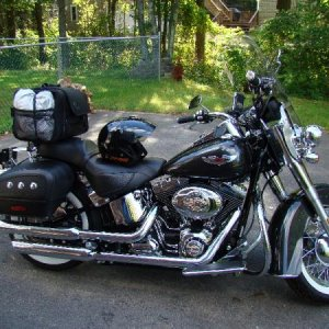 Softail Deluxe 07