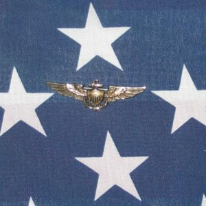 Wwii Naval Wings