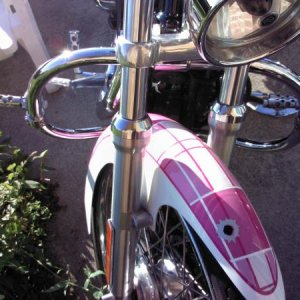 Pink Plaid Fender, Crash Bar